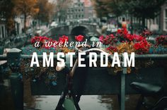 Amsterdam / bike and flowers - blog graphic