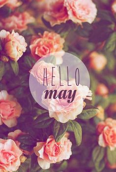 80 Hello May Quotes And Sayings To Bring In The Wonderful, colorful and warm month. Enjoy these quotes for a new month and love another great may! Photo Wallpaper, Wallpaper Backgrounds, Hello May Quotes, Wallpaper For Facebook, Calendar Pictures, Happy May, New Month, Most Beautiful Flowers, Months In A Year