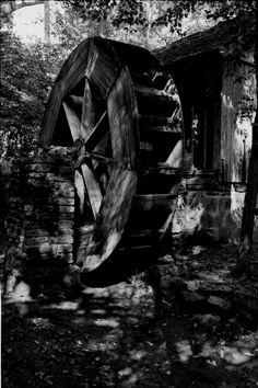 Water Wheel, S.C. Botanical Gardens, 2002.