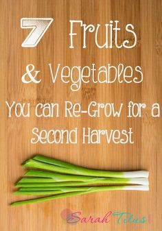 7 Fruits & Vegetables You Can Re-Grow For a Second Harvest to Save Yourself Some Money