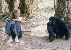 Photo from the Jane Goodall institute. http://www.janegoodall.org/