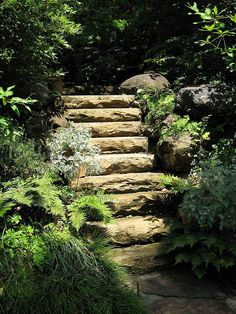 so in love with stone stairs and walls shadegardendiy shadegardenwall shadegardenideas Backyard Gates, Garden Stairs, Garden Gates, Backyard Landscaping, Garden Pool, Shade Garden, Ikebana, Stone Stairs, Stone Walls