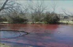 February 2014: Mysterious Phenomenon As Wichita Pond Water Turns Blood Red