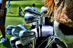 Golf bag of the Champion Golfer of the Year, Ernie Els.