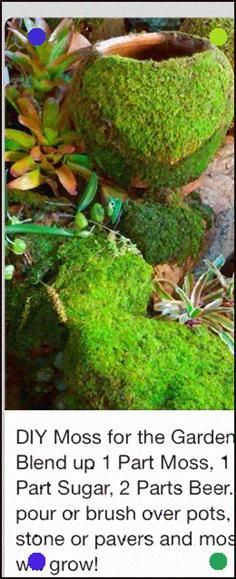 Sign Post 5pcs 100% Original Fence Rainbow The Cheapest Price Miniature Fairy Garden Terrarium Welcome Stone