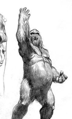 Animal Sketches, Animal Drawings, Pencil Drawings, Art Sketches, Alex Ross, Gorilla Tattoo, Comic Art Community, King Kong, Creature Design
