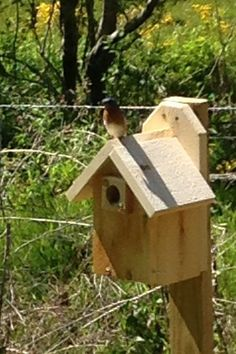 Traditional Bird House, Wood Bird House This Bluebird house is design to attract Bluebirds. This Hand crafted bird house is made of 7/8 thick Northern White Cedar, which is rot & termite resistance.Will last for many years of service. Easy clean out door for seasonal clean up #birdhouses