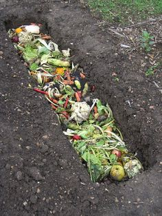 Trench composting - Dig a short one foot ditch, chop yard trimmings and food scraps, and mix them into the soil in the bottom four inches of the trench. Resume digging the trench until the materials are covered and a new trench is formed. When creating any kind of compost pile, avoid using material that re-sprouts, such as willow, alder, and Bermuda grass.