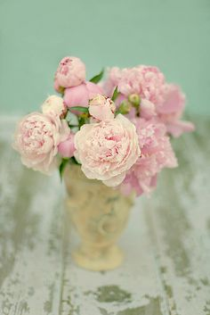 My favorite flowers...