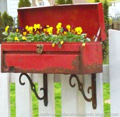 Suggested garden container recipe: Old rusty tool box turned into a flower box hosts purple and yellow violas adds colour to a white painted gate. from the container garden club board. Join the container garden club via @mirandaepiercy, post your pictures, have fun!