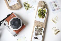 DIY-Geschenkidee für Weihnachten: Treibholz mit Pflanzen-Fotos schmücken