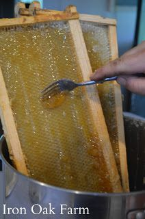 harvesting honey without extractor