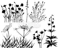 Summer plants set Royalty Free Stock Vector Art Illustration