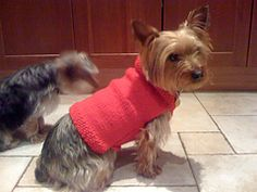 Dog sweater -- with a generous size opening at the neck so it's more comfortable for your dog, and easier to get on and off.