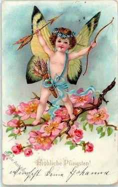 1902 Amor Pfingsten: Ansichtskarten-Center Onlineshop