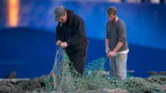 Regulators Ban Cod Fishing In Gulf Of Maine As Stocks Dwindle
