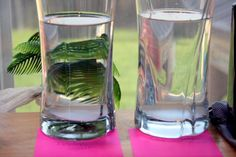 Formula to Test Drinking Water