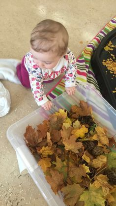 Autumnal sensory play! 9month old ideas!