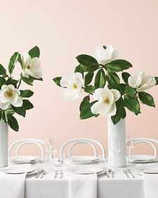 These are beautiful (& cheap!) paper magnolia's