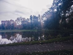 #pond #park #walk #october #autumn #lightroom #shotononeplus3 #travel #outdoors #nature #day