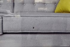 When they simply don't care about you ... | von pietschy.de  #StefaniePietschmann #documentaryphotography #documentaryphotographer #TelAviv #furniture #fly #sofa #smashed #mashed #window #shopwindow #RIP #Israel #fail #urbannature #insects #Dokumentarfotografie #Dokumentarfotograf #Möbel #Fliege #Sofa #zerquescht #zermalmt #Fenster #Schaufenster #scheitern  #סטפניפיצ'מן #צילוםתיעודי #צלמתהתיעודית #תל_אביב #רהיטים #ספה, מעך #מחית #חלון #חלוןראווה #העתקהמתקליטור #ישראל #להיכשל #ארץהקודש…