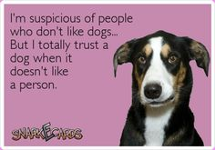 I totally trust a dog when it doesn't like a someone.
