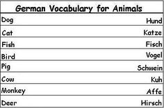 German Vocabulary Words for Animals - Learn German