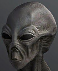 SPECIES: GINVO CLASS: GREY ORIGIN: UNKNOWN FOR: PACIFIC OBJECTIVE: Messenger of Peace BASES ON EARTH ? Observation USA 2013.........SOURCE FREEONDAREVOLUTION.BLOGSPOT.FR.........POSTED BY KROMMINO 75...........