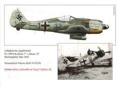 Fw 190A-8 Blue 1+12 1945 Luftwaffe im focus EDITION 20
