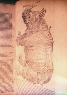 Dürer's Rhino