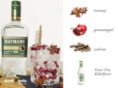 BLOG - Haymans Old Tom Gin Recept