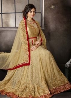 Beige designer lehenga style saree with blouse