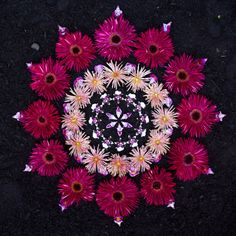 Mandala by Kathy Klein Flower Rangoli, Flower Garlands, Flower Petals, Flower Decorations, Flower Art, Mandala Art, Mandala Nature, Mandala Meditation, Land Art