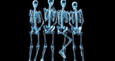 Dada a importância do esqueleto nos vertebrados, aqui estão 11 fatos surpreendentes sobre o sistema esquelético.