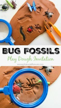 Fossils Explore Bugs with this Bug Fossils Play Dough Invitation. Includes play ideas and book pairings.Explore Bugs with this Bug Fossils Play Dough Invitation. Includes play ideas and book pairings. Preschool Programs, Preschool Curriculum, Preschool Science, Preschool Crafts, Math Literacy, Preschool Bug Theme, Kids Crafts, Homeschooling, Arts And Crafts For Kids Toddlers