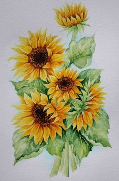. Sunflower Drawing, Watercolor Sunflower, Sunflower Art, Watercolor Flowers, Watercolor Paintings, Art Floral, Sunflower Pictures, Botanical Flowers, Painting & Drawing