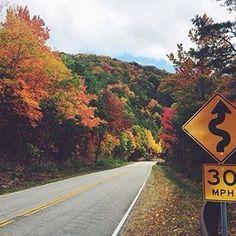 On the #cherohalaskyway. Photo @breannaglass. #smokymountains #ncfalloffame #visitnc #mountains #fall #fallcolors