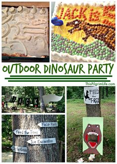 An outdoor dinosaur party to celebrate my five-year-old's birthday.