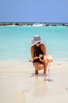 Wauw, deze vakantie is bijna te mooi om waar te zijn! In de zomer genieten van het prachtige eiland ARUBA! Spot flamingo's, geniet van de vriendelijke mensen en bruin je huid op één van de witte stranden. https://ticketspy.nl/zomervakantie/wauw-aruba-in-de-zomer-in-augustus-va-e883/