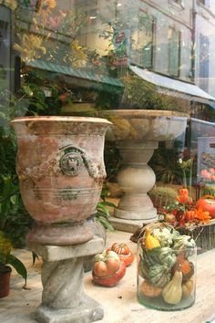 Village life in Arles reflected in the window of a flower shop - France