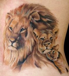 Hmmm.. Crazy idea.. Get one lion tattoo then add a lioness when I get married. Then add Cubs as we have children #Whoa