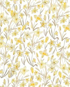 Design Patterns In Nature, Textures Patterns, Print Patterns, Scrapbook Background, Paper Background, Graphic Design Pattern, Graphic Design Illustration, Textile Prints, Floral Prints