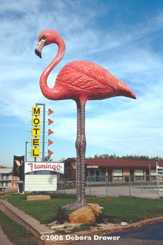 Only one question - will this fit in my yard?      {Flamingo Motel, Wisconsin Dells, WI}