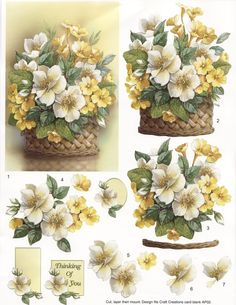 Thinking of Your White and Yellow Flowers