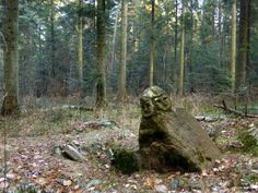 """""""Svantevith stone"""" in the forest of Zagnansk (southern Poland)."""