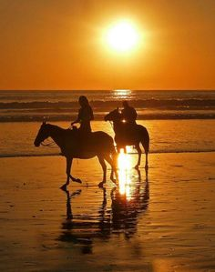 Such is life in paradise... sunset horseback ride in Tamarindo, Costa Rica.......Pura Vida