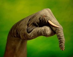 Italian artist Guido Daniele was hired by an advertising agency to create paintings of animals on human bodies