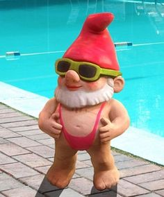 You know how much I love gnomes, and if you have seen Gnomeo and Juliet then you know this gnome!!!