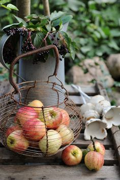 Apples in vintage basket