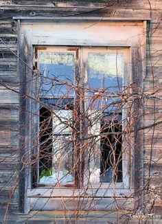autiotalo,ikkuna,hylätty